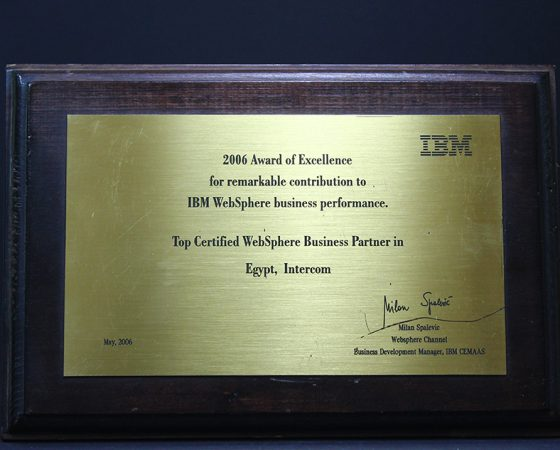 IBM : Award of excellence 2006