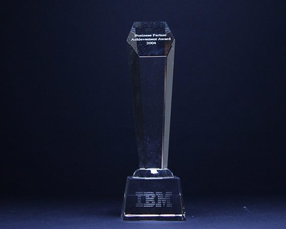 IBM : Business partner achievement award 2004